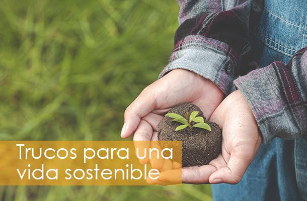 trucos vida más sostenible